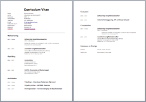 Cv voorbeeld curriculum vitae 5 gratis cv templates downloaden cv voorbeeld yelopaper Image collections