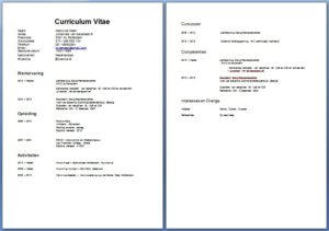 Een cv voorbeeld boekhouder. Met een voorbeeld hoef je enkel gegevens aan te passen.