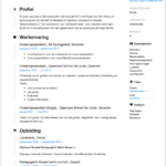 CV Voorbeeld Onderwijsassistent