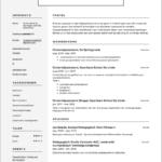 Curriculum Vitae Voorbeeld Onderwijsassistent
