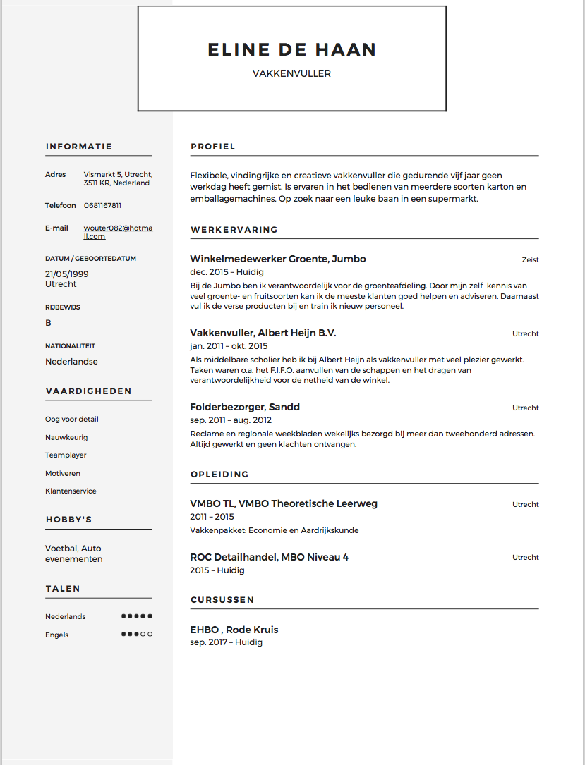 Curriculum vitae samples for law students image 2