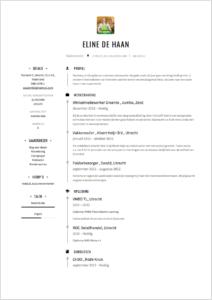 Vakkenvuller CV