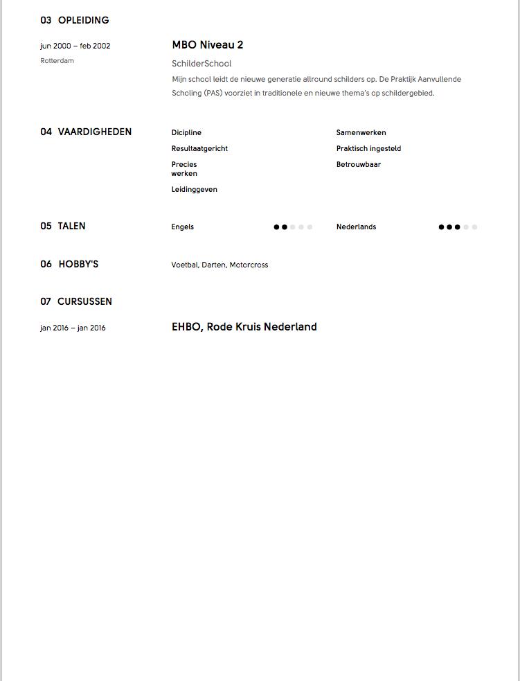 Schilder CV Voorbeeld 2