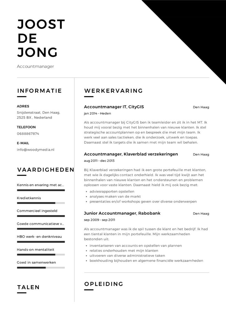 Accountmanager CV