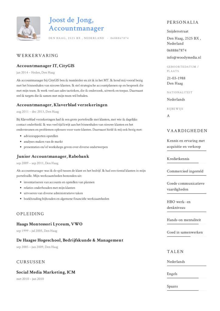 CV Voorbeeld Accountmanager