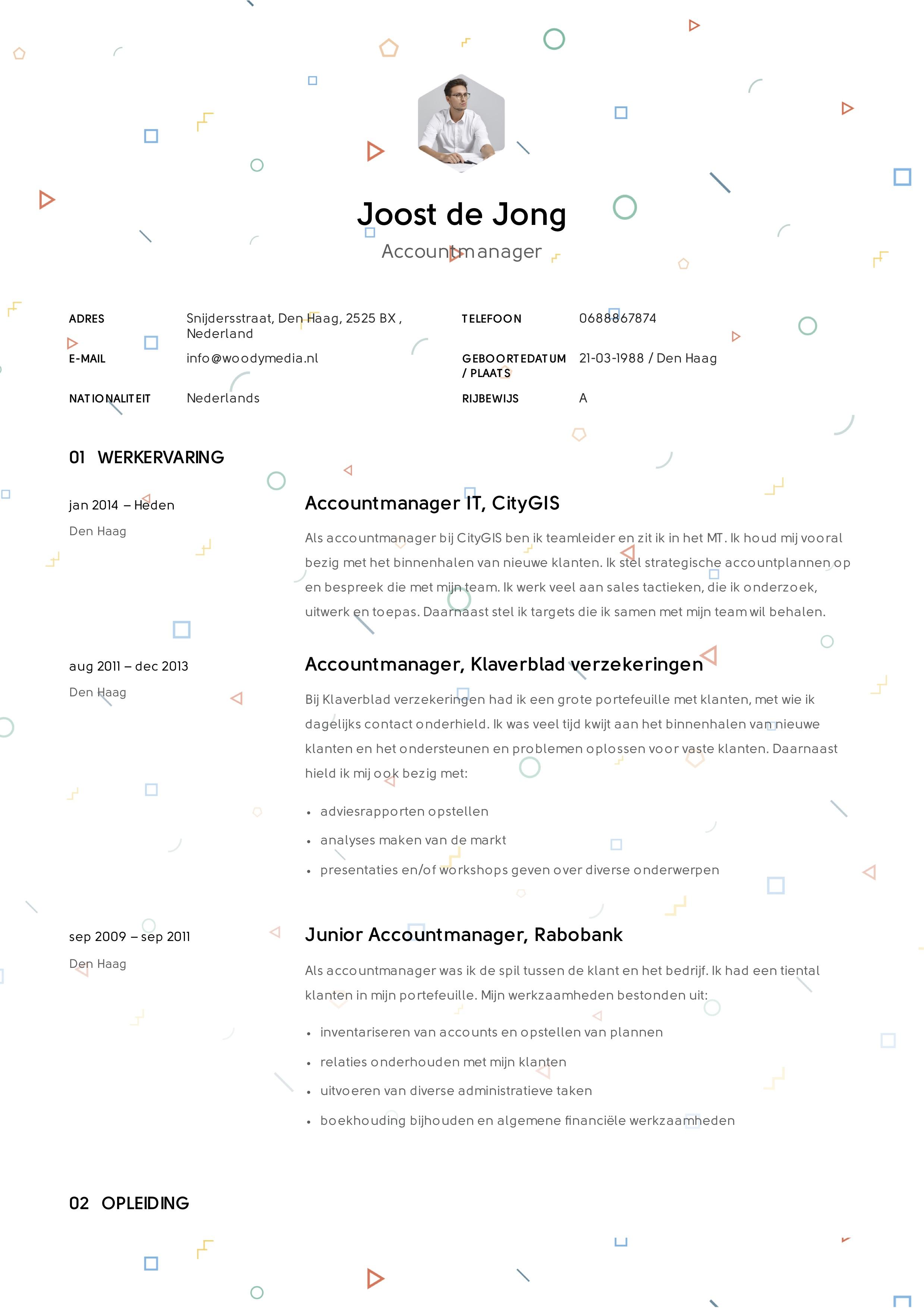 Voorbeeld CV Account Manager