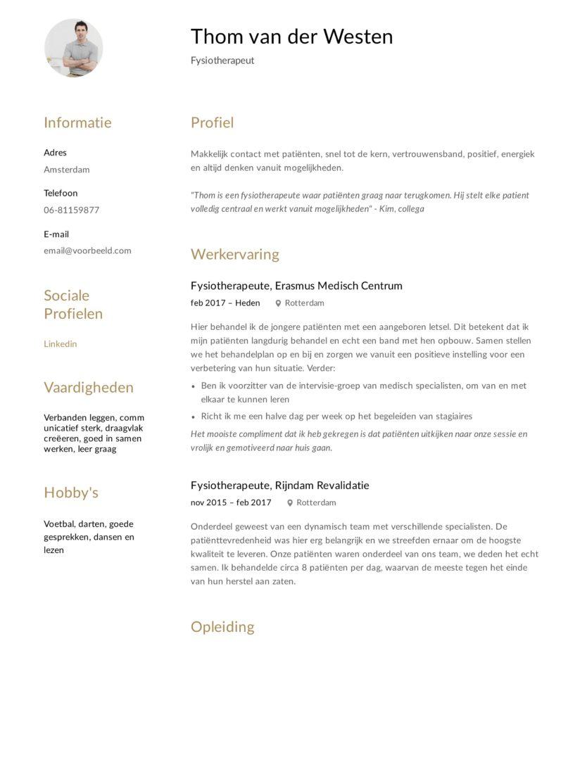 Fysiotherapeut CV Voorbeeld