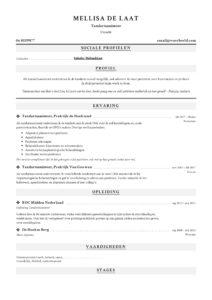 Tandartsassistent CV Voorbeeld (3)