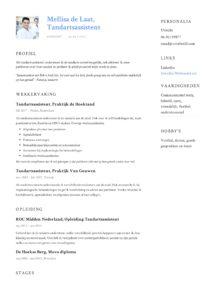 Tandartsassistent CV Voorbeeld (5)