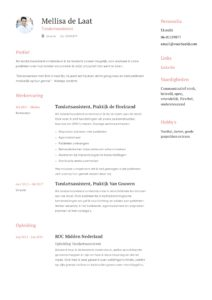 Tandartsassistente CV Voorbeeld (6)