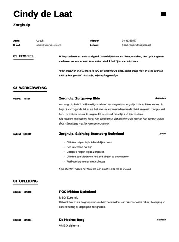 Zorghulp CV Voorbeeld