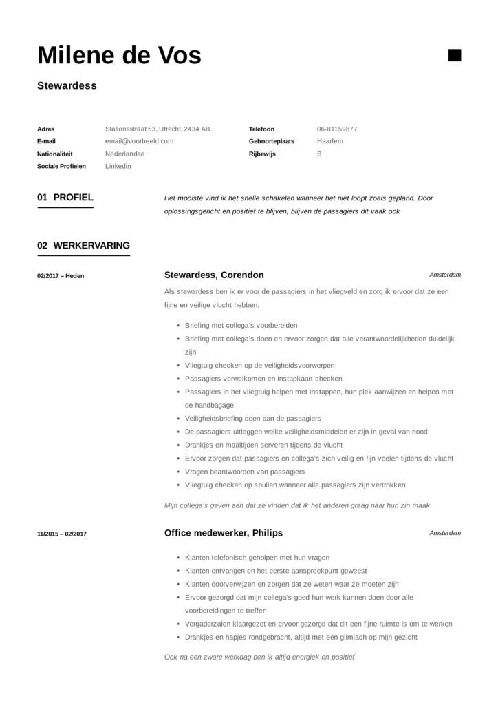 Steward CV Stewardess