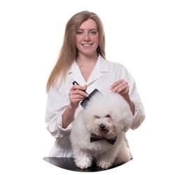 Vrouwlijke dierentrimmer knips hond en lacht naar de camera. Leuke en liefkijkend meisje met roodblond haar