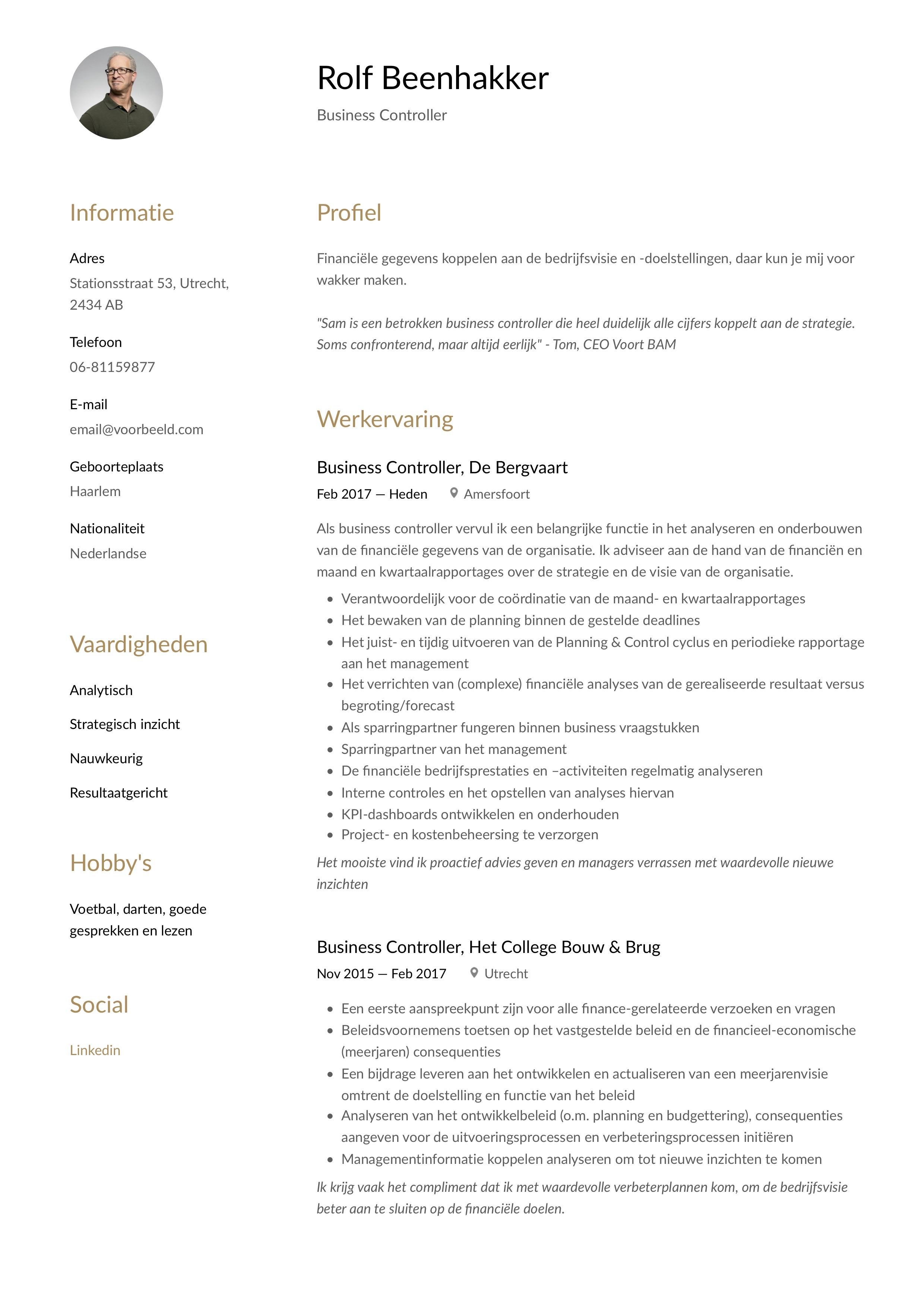 CV Voorbeeld Business controller