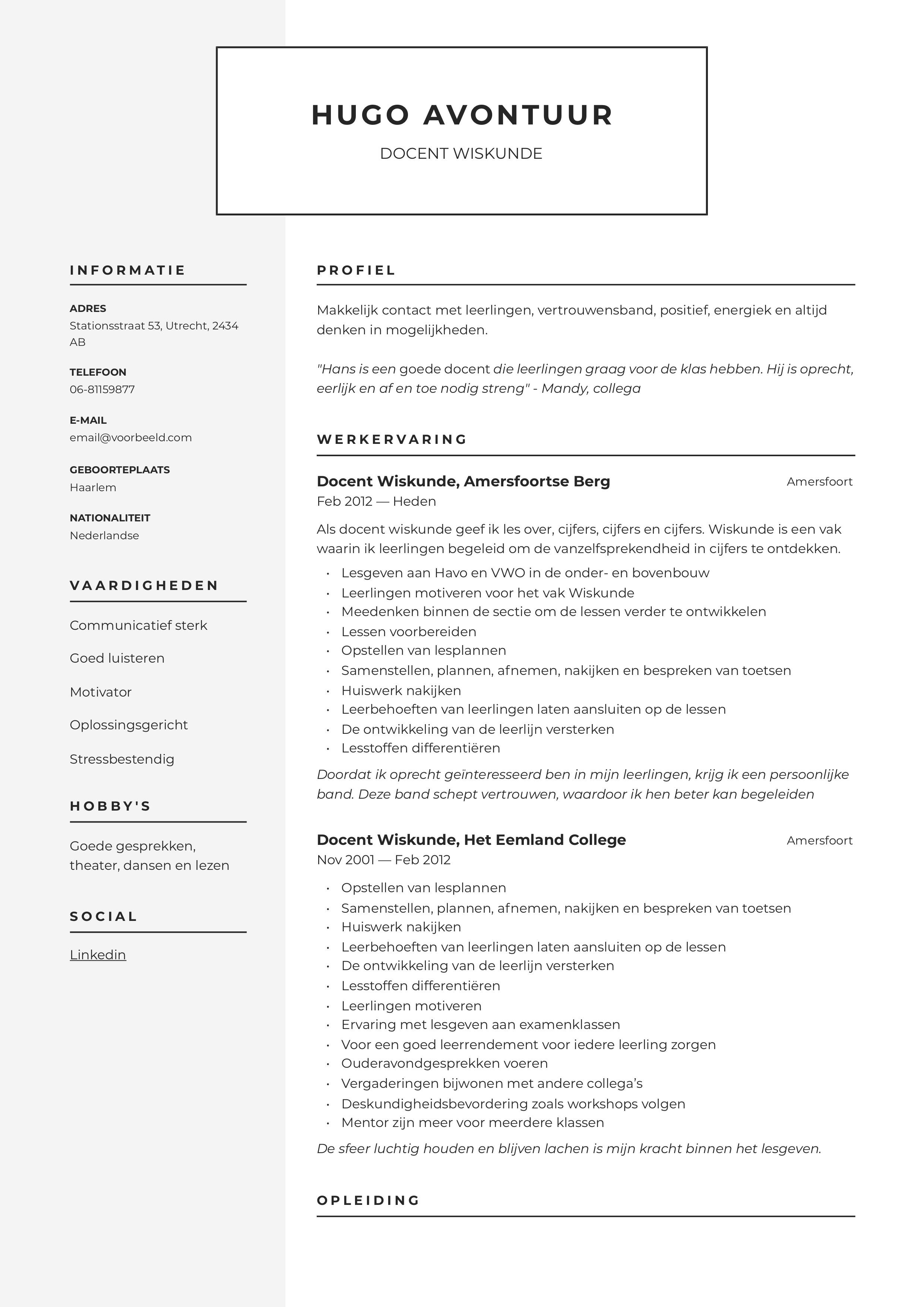 CV Docent Wiskunde