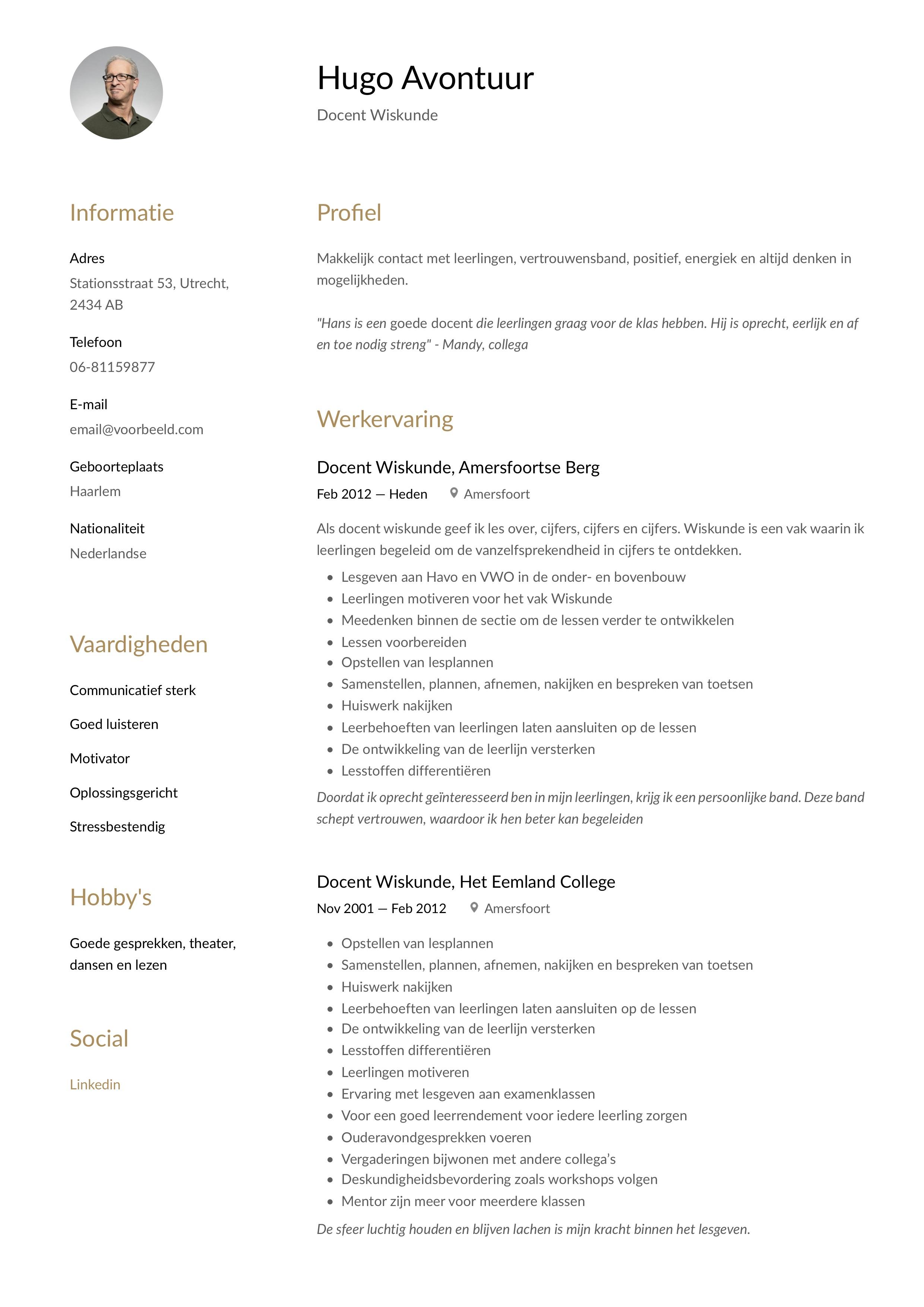 CV Voorbeeld Docent Wiskunde