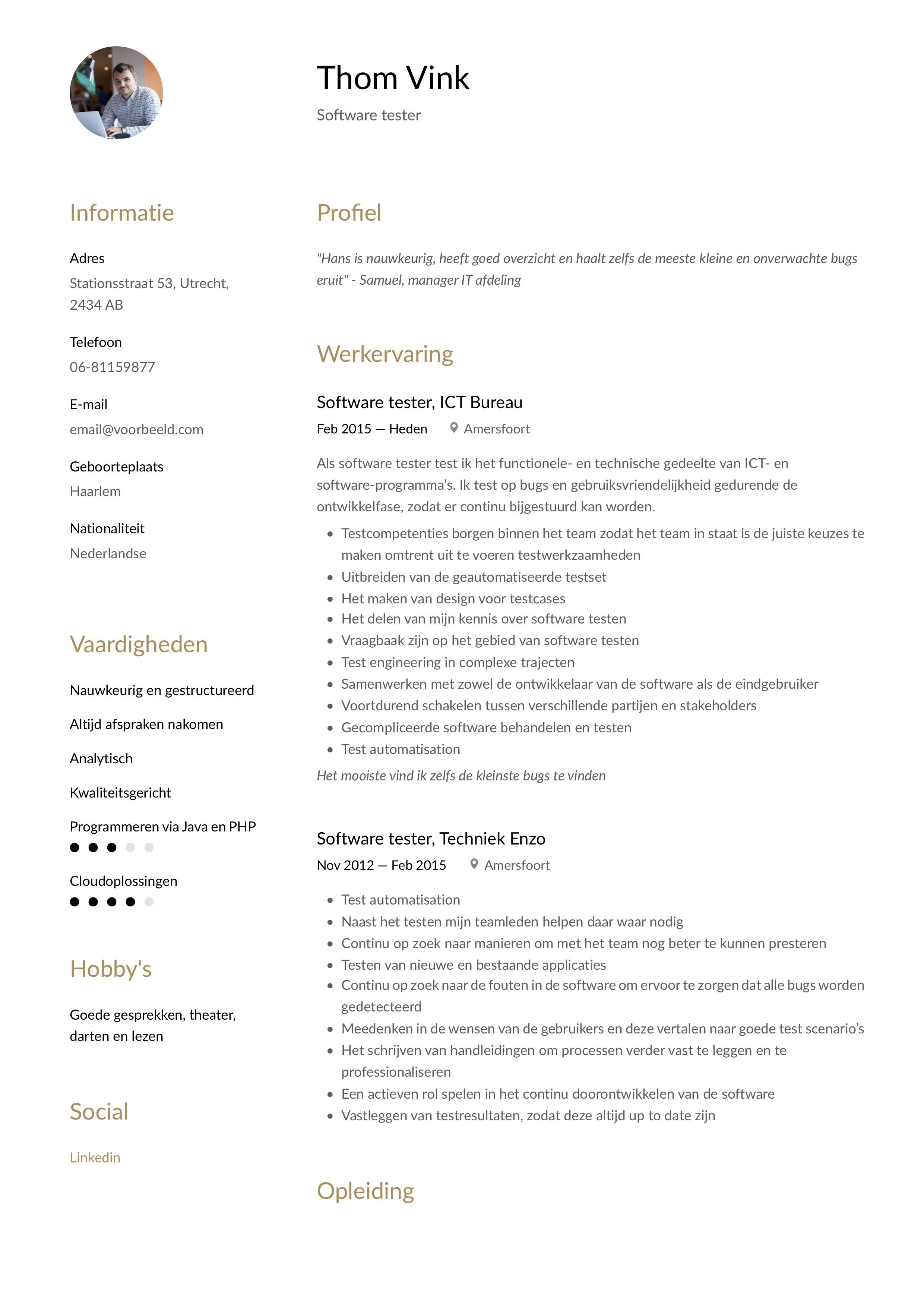 CV Voorbeeld Software tester