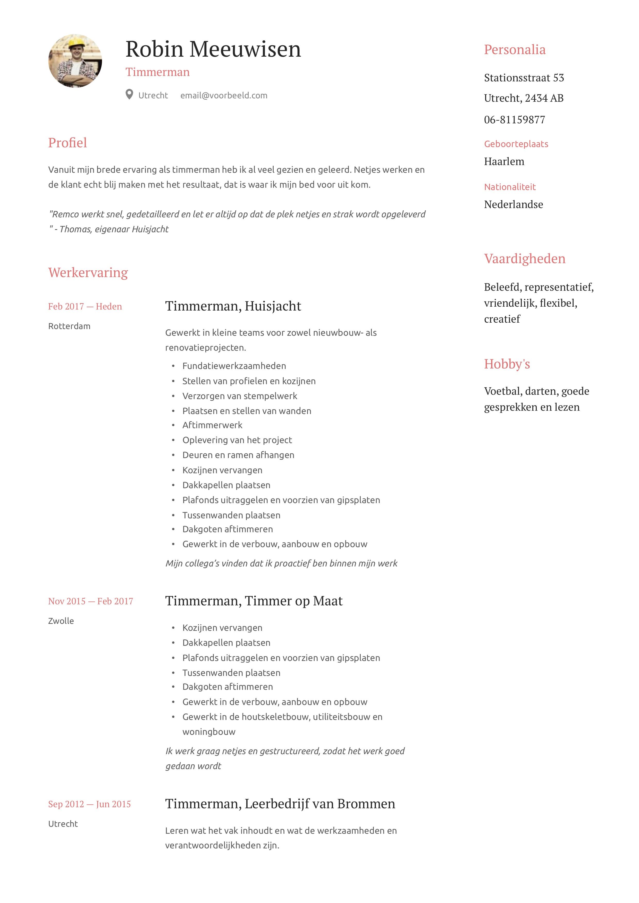 Timmerman CV Voorbeeld