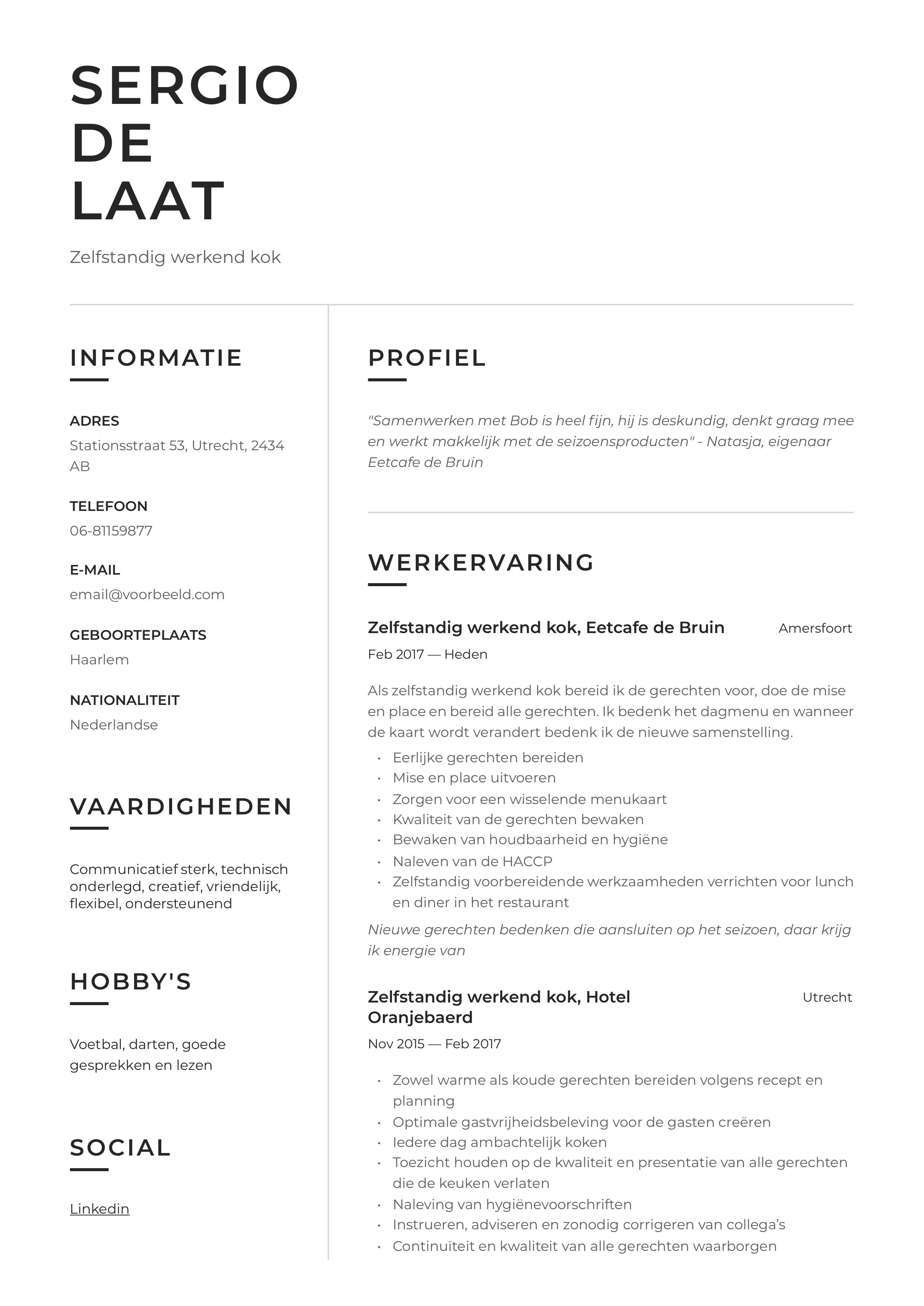 CV Voorbeeld Zelfstandig werkend kok
